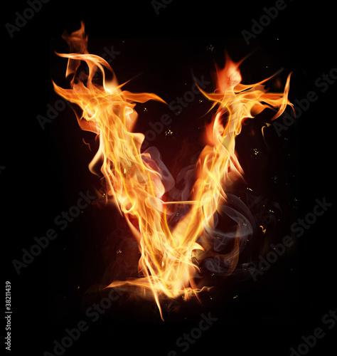 Fototapety, obrazy: Fire alphabet letter