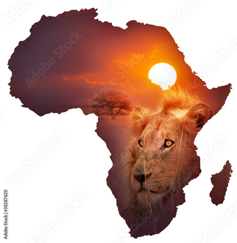 Deurstickers Afrika African Wildlife Map