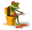 canvas print picture Grenouille et wc