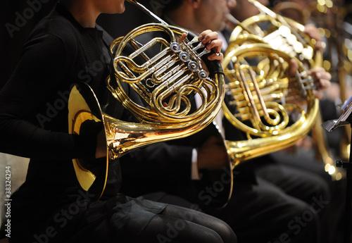 Cuadros en Lienzo french horn