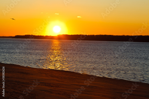 Garden Poster Brown Beatiful Sunset on Volga River in Samara, Russia