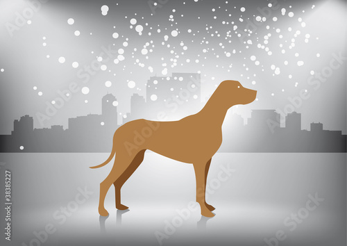 Poster Dogs Dog in winter city
