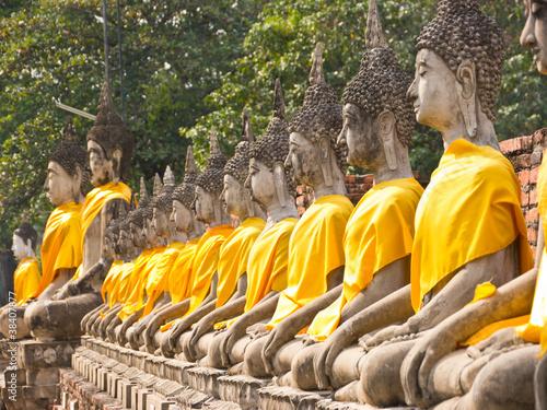 Buddha statue in a row