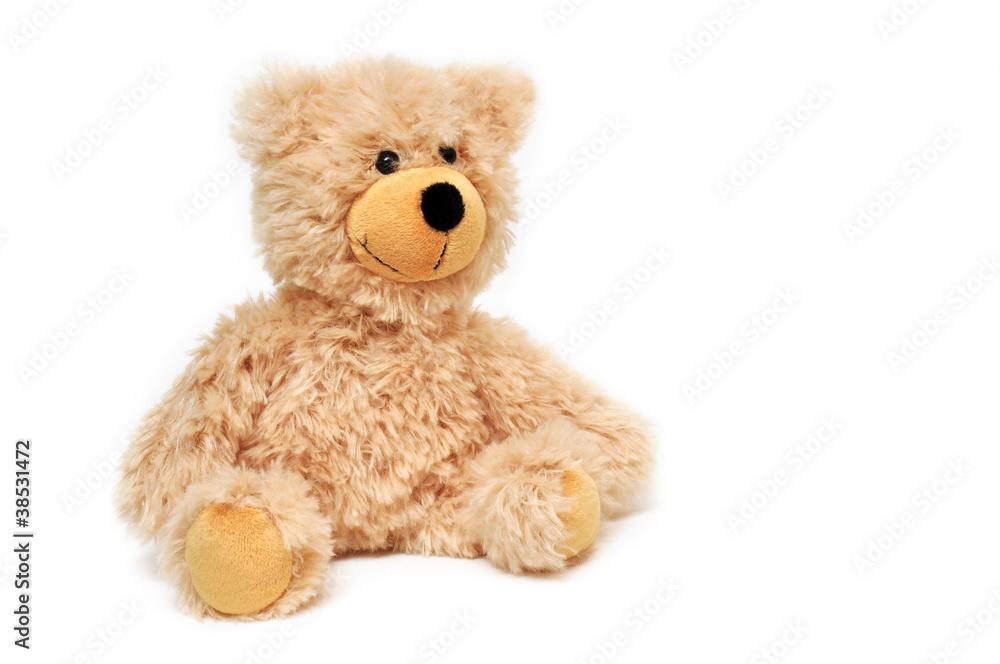 Fototapeta Teddybär