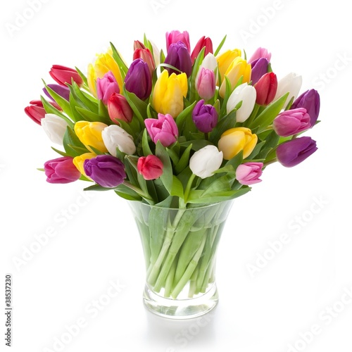 Keuken foto achterwand Tulp Bunte Tulpen