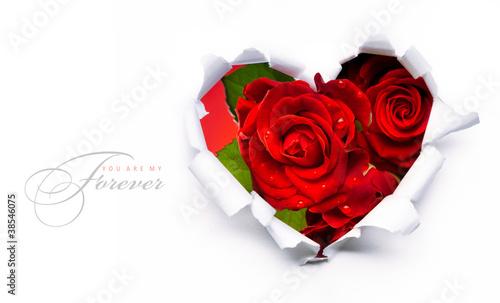 Plakat Projekt sztuka transparentu z czerwonych róż i papieru serca na Walentynki