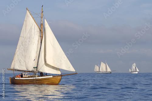 Papiers peints Navire Tender with white sails
