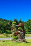 Fototapeta Zwierzęta - dzięcioł z kwiatów