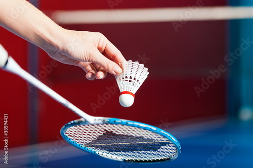 Badminton in einer Turnhalle - Hand mit Ball Canvas Print