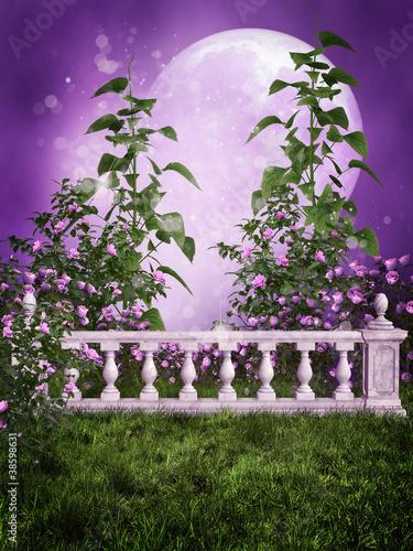 Fototapety, obrazy: Fioletowy ogród z marmurowym ogrodzeniem