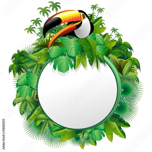 Photo Stands Draw Tucano Sfondo Giungla-Toucan on Jungle Label Background-Vector