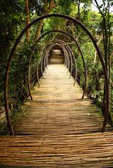 Fototapeta Suspension bridge, South Africa.