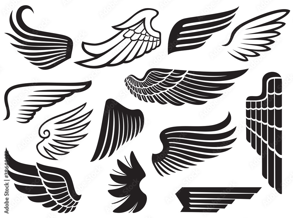 Fototapeta wings collection (set of wings)