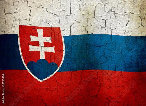Grunge Slovakia flag Fototapet