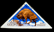 USSR - CIRCA 1973: A Stamp Printed In USSR Shows A Depiction Of