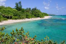 Spiaggia Di Guantanamo