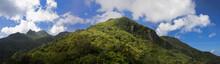 Mountain Vista In El Yunque Na...