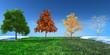 3d concept  Four seasons