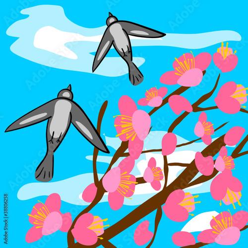 Poster Oiseaux, Abeilles sakura