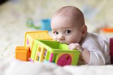Baby Bites Toy Block