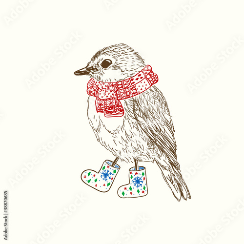 Pen and ink illustration of bird in scarf