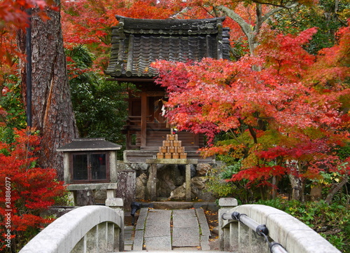 Japon en automne (Eikan-de temple)