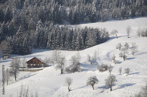 French Alps XV