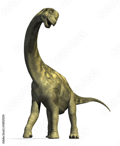 Photo  Camarasaurus Dinosaur 2