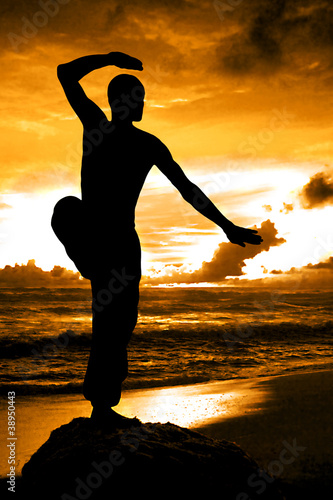 Fotografia  Martial Artist Silhouette with Orange Sunset