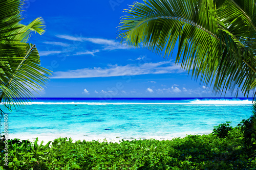 Foto Rollo Basic - Deserted tropical beach framed by palm trees (von Martin Valigursky)