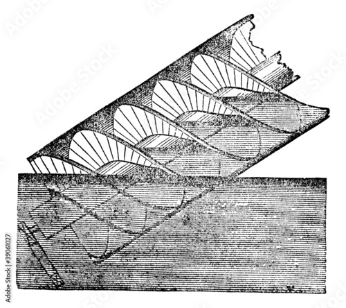Photo Archimedes screw or Archimedean screw, vintage engraving.