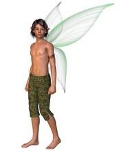 Fairy Boy With Green Gossamer Wings