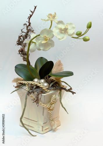 Foto op Canvas In het ijs Orchidee