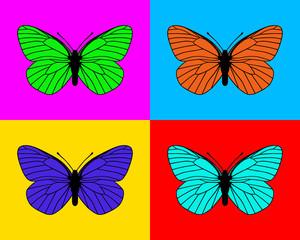 Fototapeta Popart Schmetterlinge