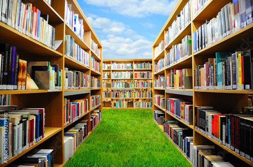 Poster Bibliotheque Book garden