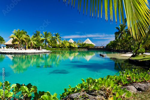 Foto Rollo Basic - Tropical resort with a green lagoon and palm trees (von Martin Valigursky)