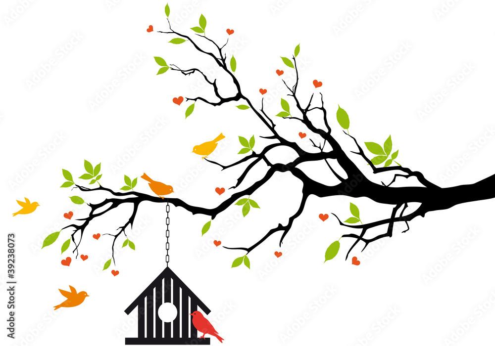 ptak dom na wiosnę drzewo, wektor