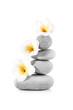 Zen et Equilibre