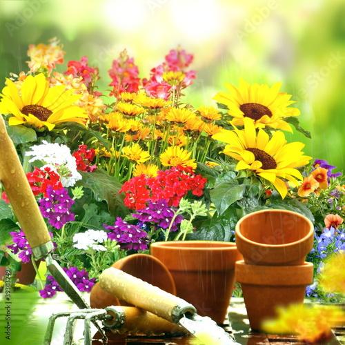 Papiers peints Jardin Gartentisch