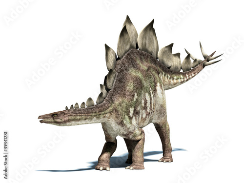 Stegosaurus dinosaur. Isolated on white, with clipping path. Poster