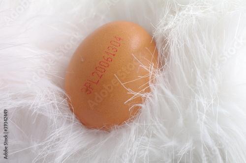 Fototapeta Oznakowane jajko obraz