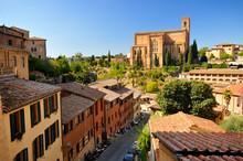 Basilica San Domenico (siena)