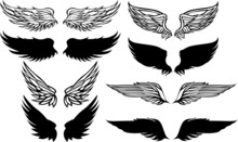 Wings Graphic Vector Set.