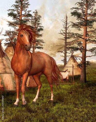 Poster Indiens Brązowy koń w starym lesie