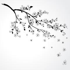 NaklejkaSakura blossom