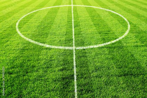 Foto-Stoff bedruckt - fussball mittelfeld (von jarma)