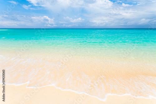 Staande foto Caraïben tropical beach