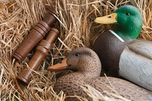 Duck Decoy With Stuffed And Ca...