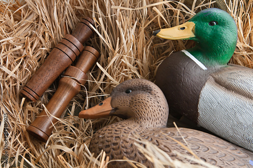 Spoed Foto op Canvas Jacht duck decoy with stuffed and calls