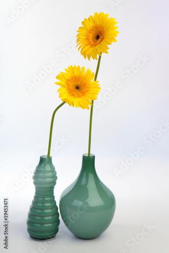 Fototapety, obrazy: Gerbera flowers